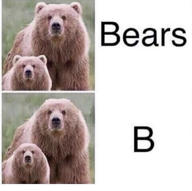 meme about taking the ears off a bear