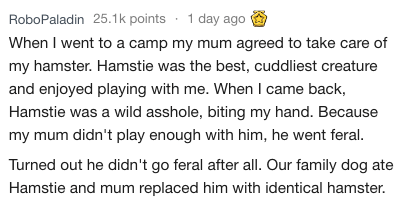 Text - RoboPaladin 25.1k points 1 day ago When I went to a camp my mum agreed to take care of my hamster. Hamstie was the best, cuddliest creature and enjoyed playing with me. When I came back, Hamstie was a wild asshole, biting my hand. Because my mum didn't play enough with him, he went feral. Turned out he didn't go feral after all. Our family dog ate Hamstie and mum replaced him with identical hamster.