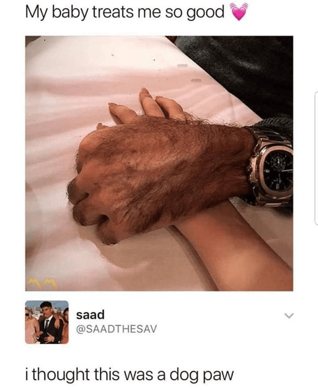 Funny meme about hand that looks like dog paw.