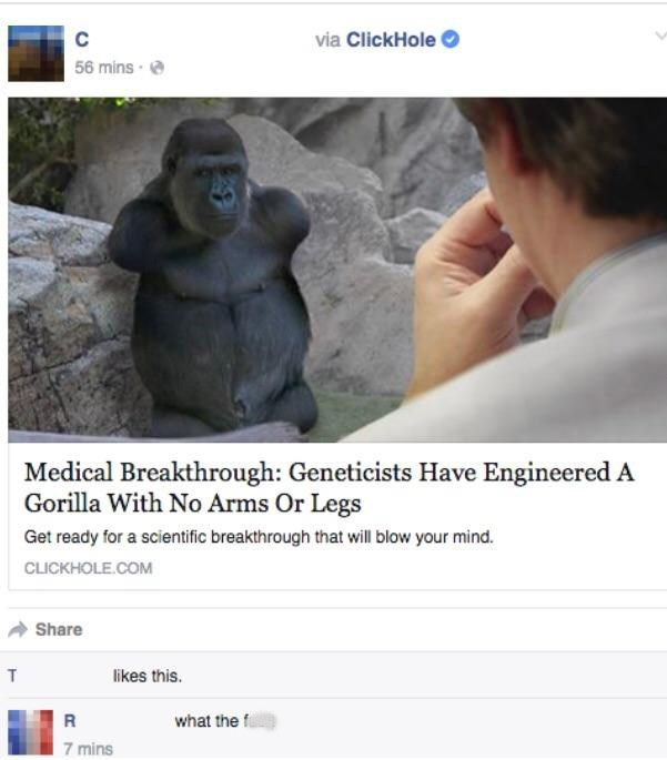 Facebook reply by person who ate the onion in article about genetically engineered gorilla