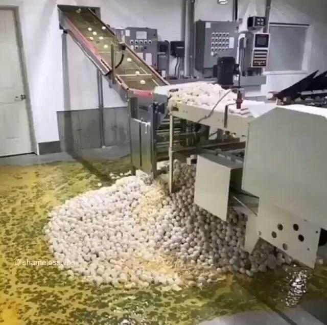 cursed image - egg sorting machine failure