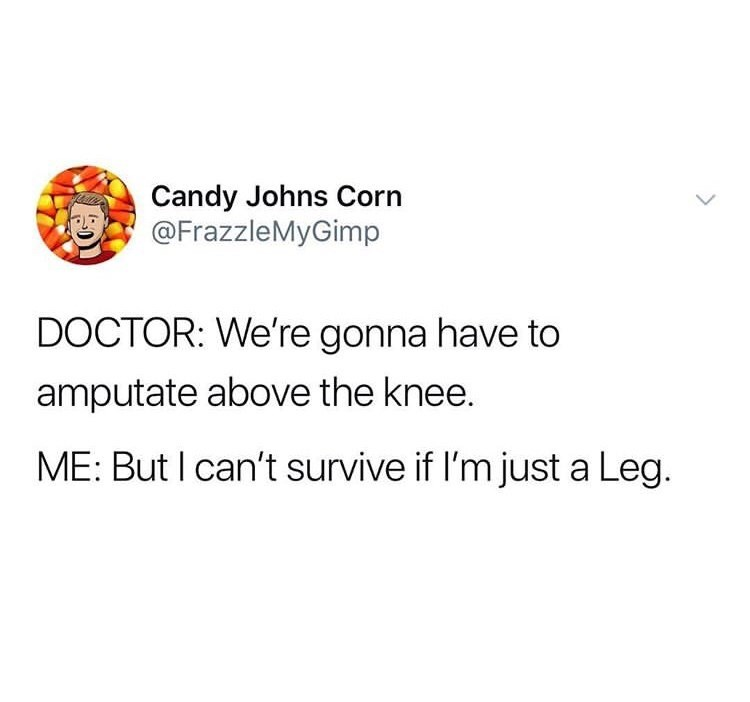 "Twee that reads, ""Doctor: We're gonna have to amputate above the knee; Me: But I can't survive if I'm just a leg"""