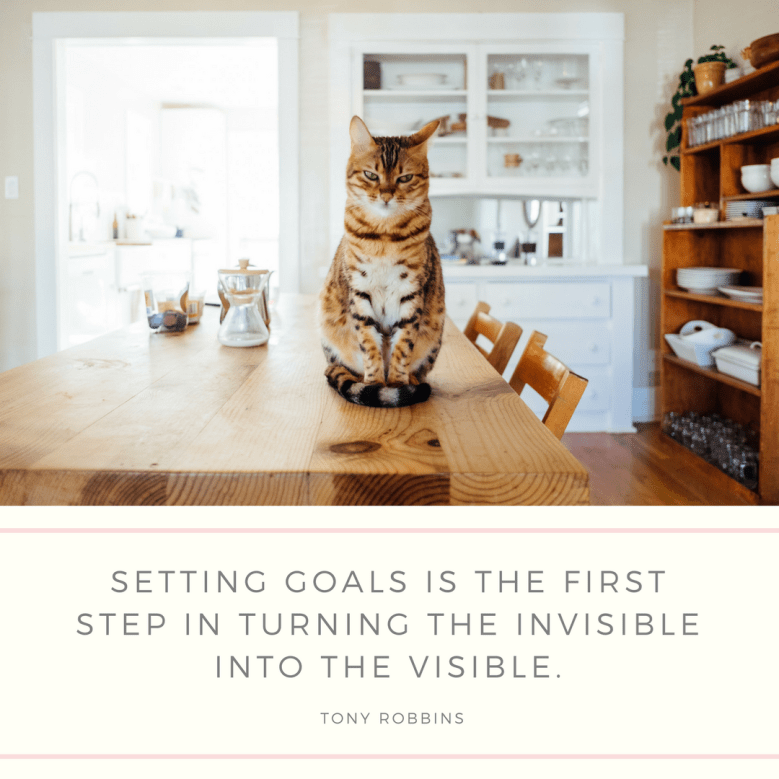 Cat - SETTING GOALS IS THE FIRST STEP IN TURNING THE INVISIBLE INTO THE VISIBLE TONY ROBBINS