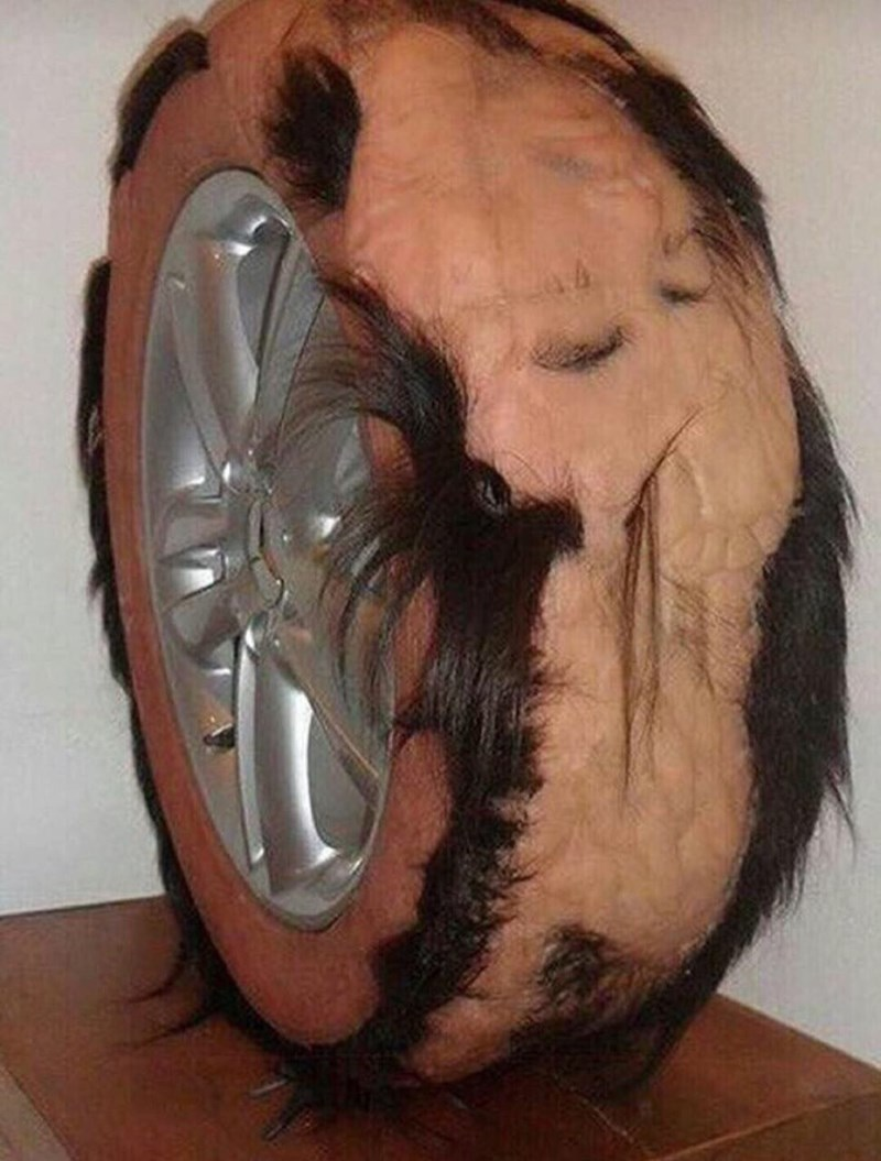 cursed image of car wheel covered in flesh and hair
