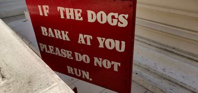 Text - IF THE DOGS BARK AT YOU PLEASE DO NOT RUN.