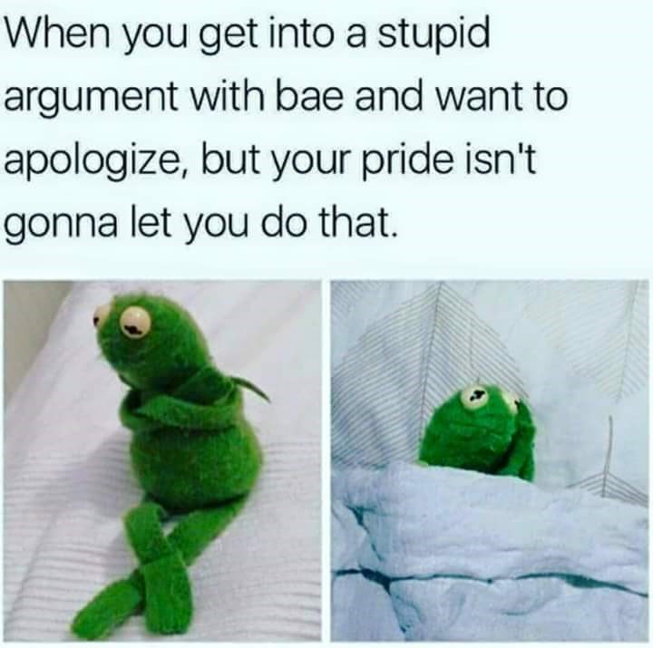 meme about not wanting to apologize for fighting with bae with pics of Kermit looking insulted