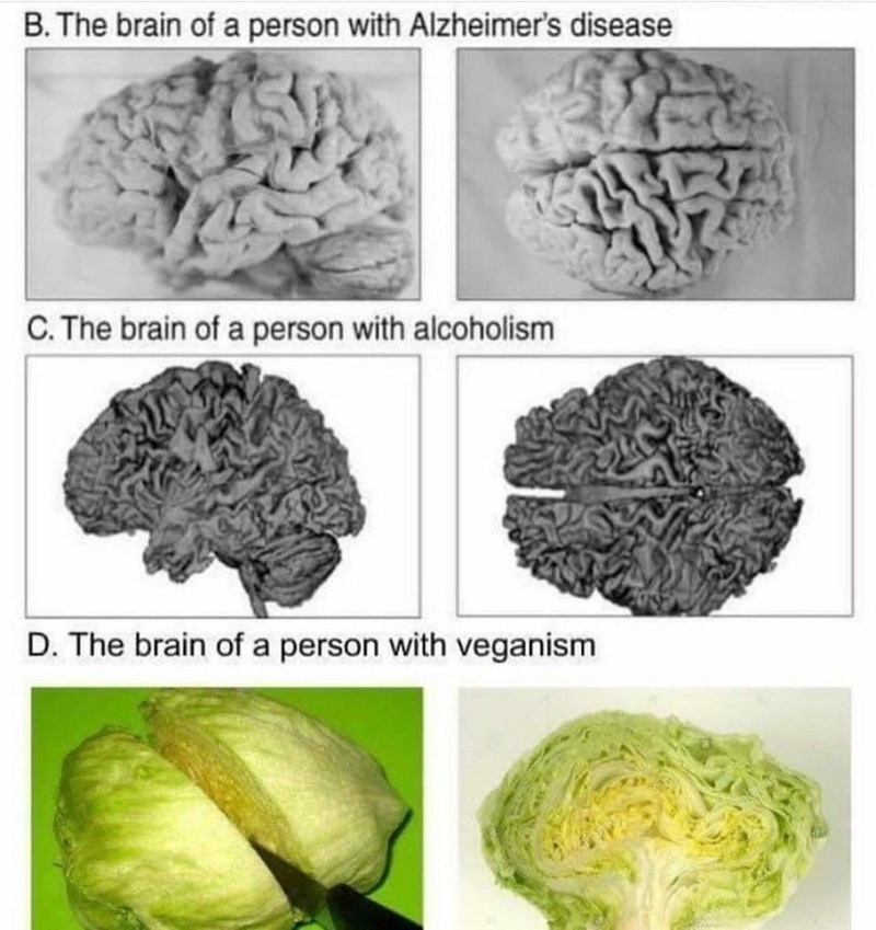 Funny meme about vegan brains.