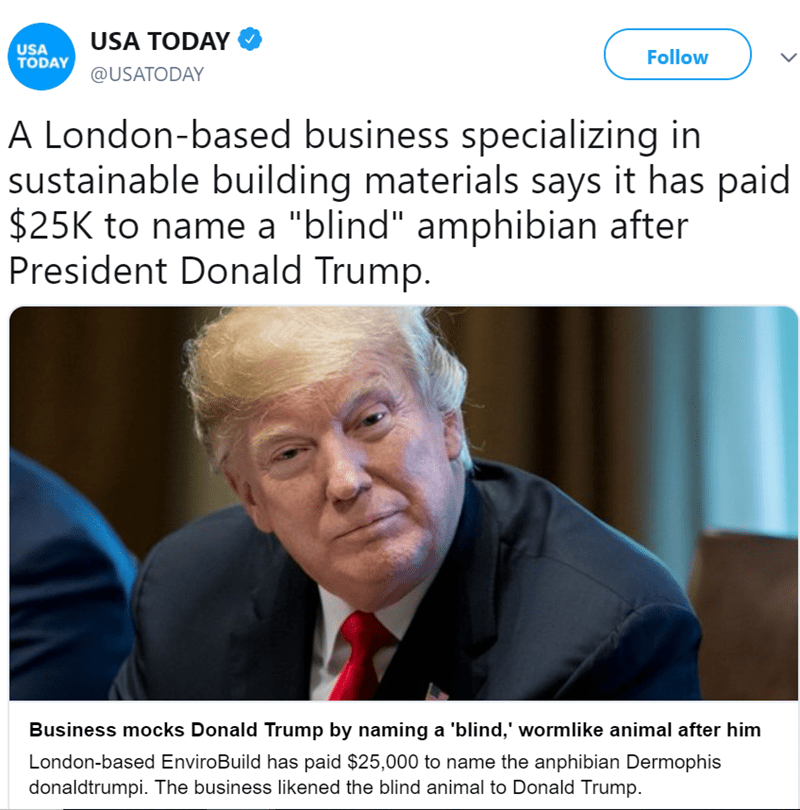 """Text - USA TODAY USA TODAY Follow @USATODAY A London-based business specializing in sustainable building materials says it has paid $25K to name a """"blind"""" amphibian after President Donald Trump. Business mocks Donald Trump by naming a 'blind,' wormlike animal after him London-based EnviroBuild has paid $25,000 to name the anphibian Dermophis donaldtrumpi. The business likened the blind animal to Donald Trump"""