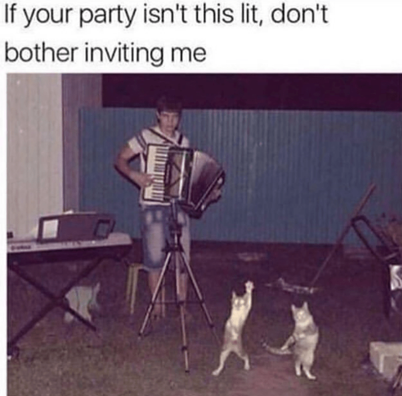 Canidae - If your party isn't this lit, don't bother inviting me