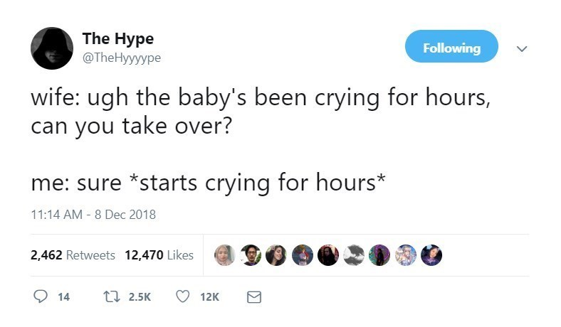 Text - The Hype @TheHyyyype Following wife: ugh the baby's been crying for hours, can you take over? me: sure *starts crying for hours* 11:14 AM - 8 Dec 2018 2,462 Retweets 12,470 Likes t 2.5K 14 12K