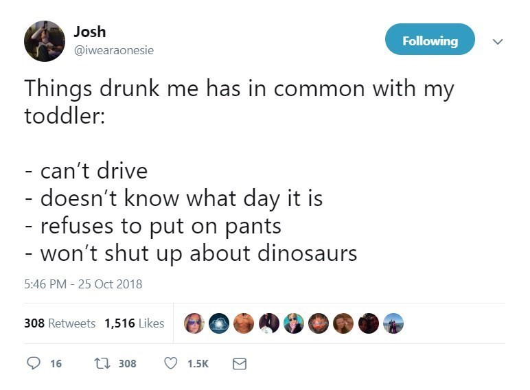 Text - Josh Following @iwearaonesie Things drunk me has in common with my toddler: - can't drive - doesn't know what day it is - refuses to put on pants - won't shut up about dinosa 5:46 PM - 25 Oct 2018 308 Retweets 1,516 Likes t308 16 1.5K