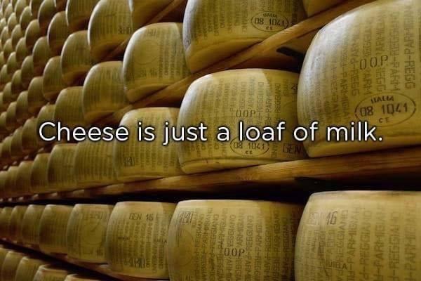stupid but clever - Parmigiano-reggiano - (ns 1021) IALM 08 1041 0OPT Cheese is just a loaf of milk 08 1041 E EN 15 RMENG at PARMISANG M PARMIGIAN ES6IANO ONVIS-P O09E-PA ARHIG ARMIGAN ONVISEEN-PARM lI-HYdREGG TVESAY PAR NYS 99-PARMGANG dREGGIANG ARMIGIA 99PAR TE ARM PAR REGGIAND P-PARMICIAL d-REGGIAND H-PARMIGAN d-REGGIA PARMIBARE OEESPARM -REGG