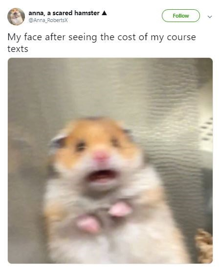scared hamster meme - Hamster - anna, a scared hamster A @Anna RobertsX Follow My face after seeing the cost of my course texts