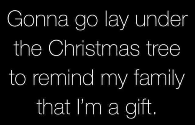 Font - Gonna go lay under the Christmas tree to remind my family that I'm a gift.