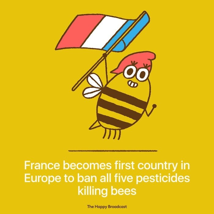 "Text that reads, ""France becomes first country in Europe to ban all five pesticides killing bees"" under an illustration of a bee holding up a French flag"