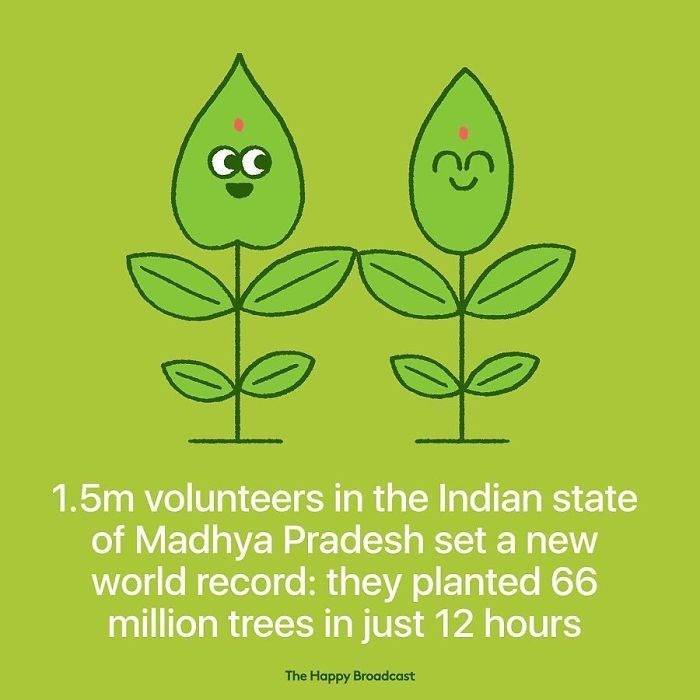 good news - Leaf - 1.5m volunteers in the Indian state of Madhya Pradesh set a new world record: they planted 66 million trees in just 12 hours The Happy Broadcast
