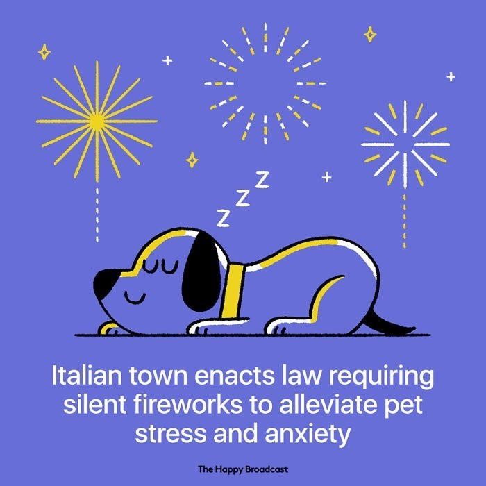 good news - Text - Z Z + Italian town enacts law requiring silent fireworks to alleviate pet stress and anxiety The Happy Broadcast