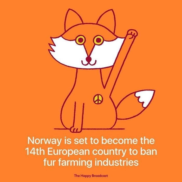 good news - Cartoon - Norway is set to become the 14th European country to ban fur farming industries The Happy Broadcast