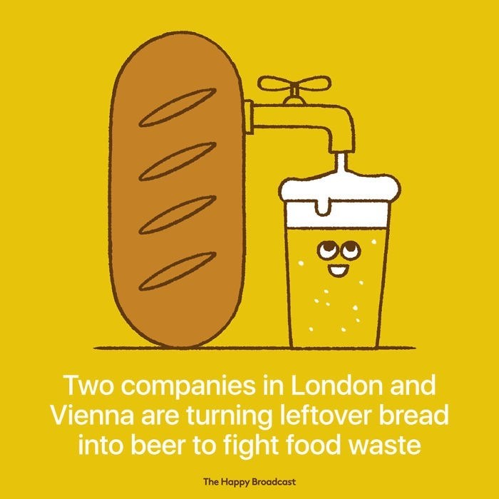 """Text that reads, """"Two companies in London and Vienna are turning leftover bread into beer to fight food waste"""" under and illustration of bread being turned into a pint of beer"""