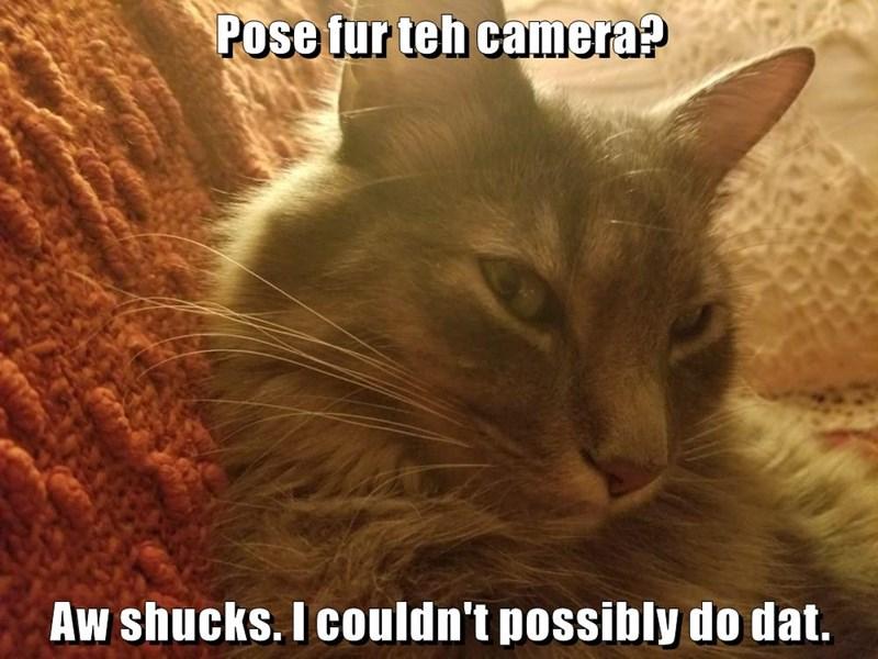 Pose fur teh camera?