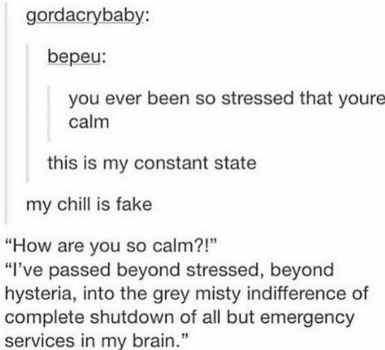 """Text - gordacrybaby: bepeu: you ever been so stressed that youre calm this is my constant state my chill is fake """"How are you so calm?!"""" """"I've passed beyond stressed, beyond hysteria, into the grey misty indifference of complete shutdown of all but emergency services in my brain."""""""