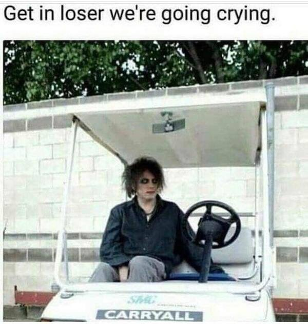 Vehicle - Get in loser we're going crying. S CARRYALL
