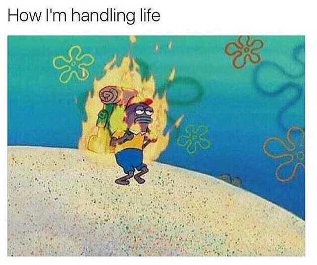 Cartoon - How I'm handling life