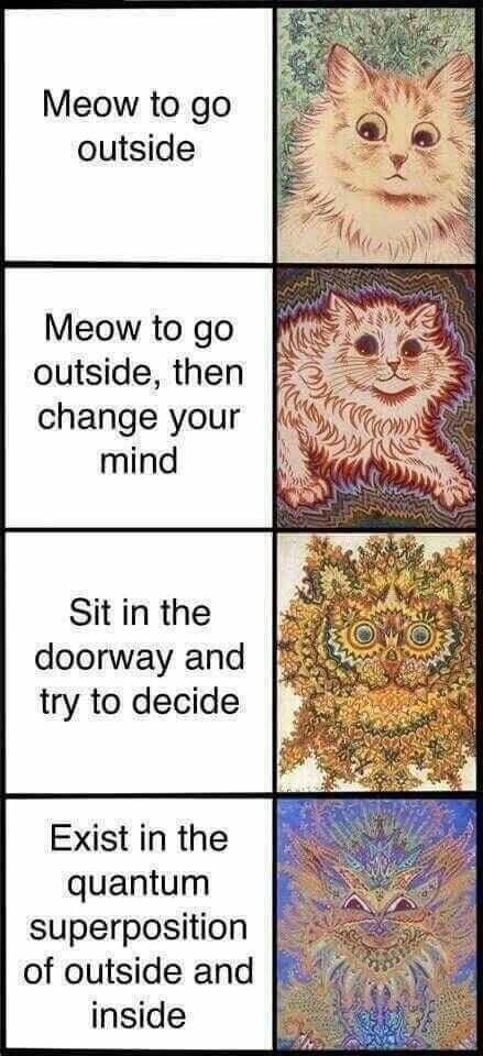 Text - Meow to go outside Meow to go outside, then change your mind Sit in the doorway and try to decide Exist in the quantum superposition of outside and inside