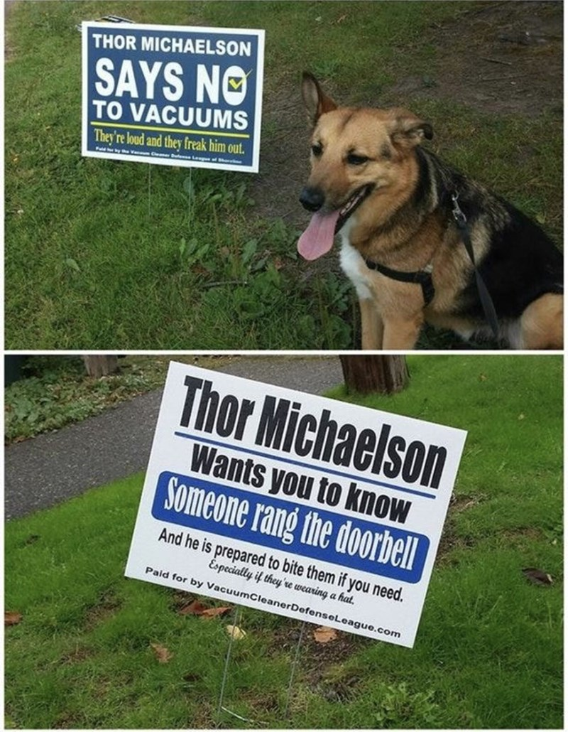 funny meme of a dog who has signs on the lawn about things he doesn't like