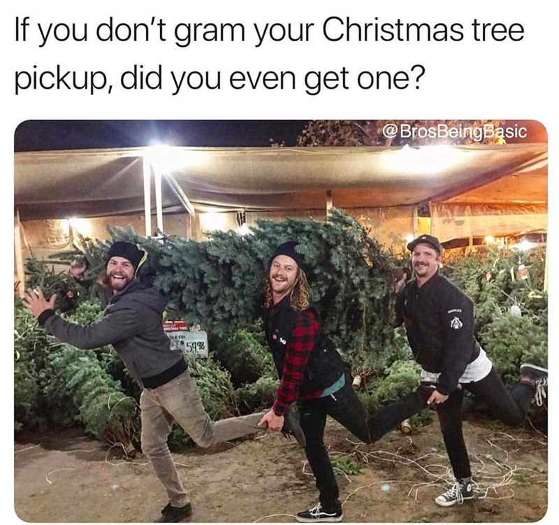 basic bros posing in front of Christmas trees
