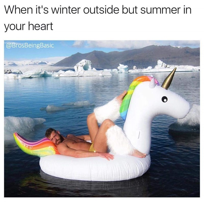 basic bros on a blowup unicorn during the winter