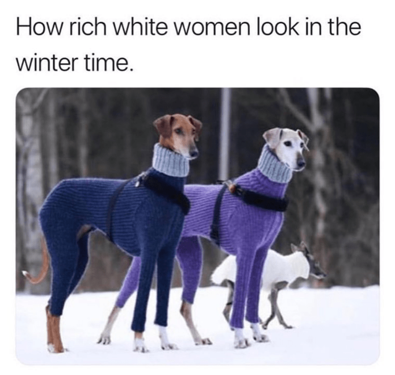 Funny meme about white women in the winter.
