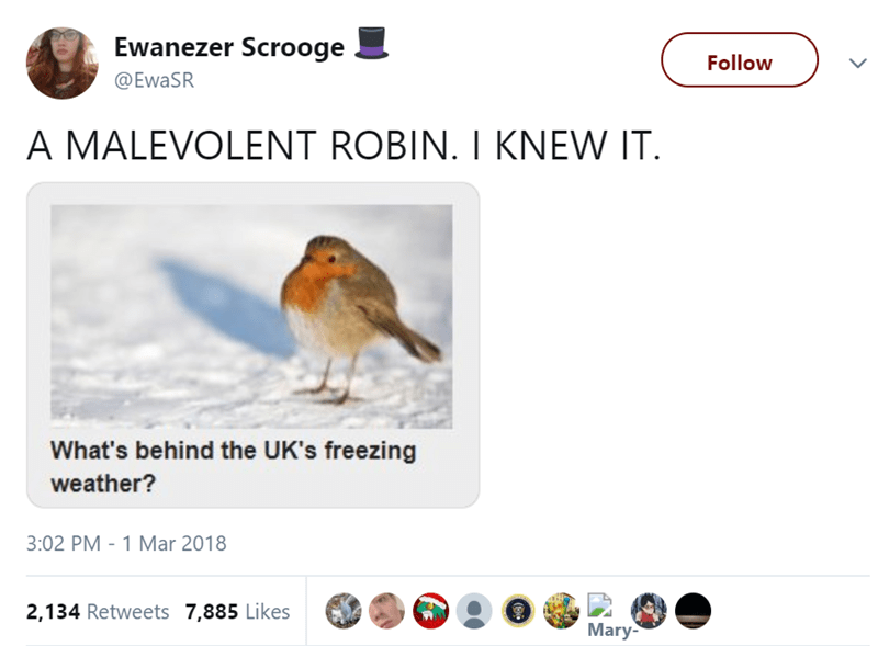 European robin - Ewanezer Scrooge Follow @EWASR A MALEVOLENT ROBIN. I KNEW IT. What's behind the UK's freezing weather? 3:02 PM - 1 Mar 2018 2,134 Retweets 7,885 Likes Mary