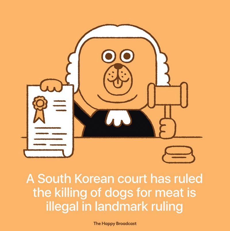 Cartoon - OO A South Korean court has ruled the killing of dogs for meat is illegal in landmark ruling The Happy Broadcast