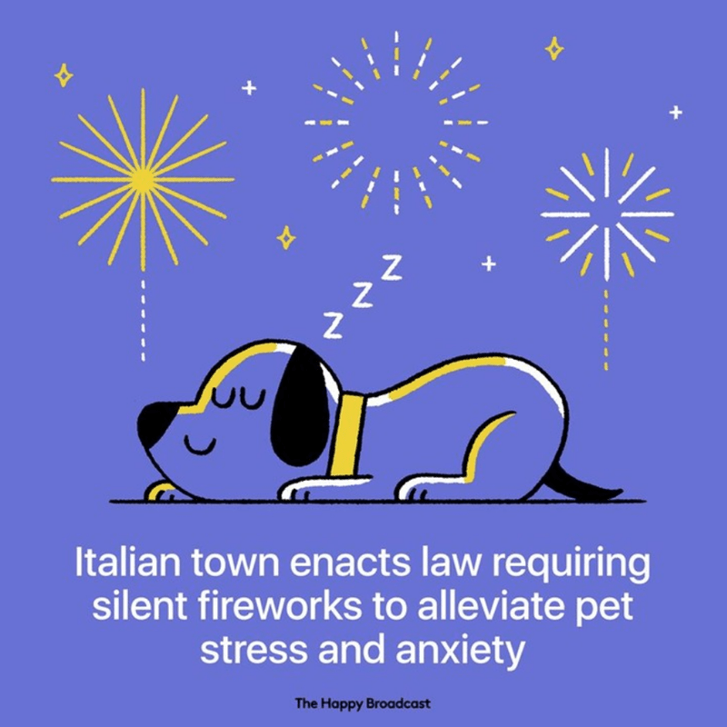 Text - + + Z Z + Italian town enacts law requiring silent fireworks to alleviate pet stress and anxiety The Happy Broadcast