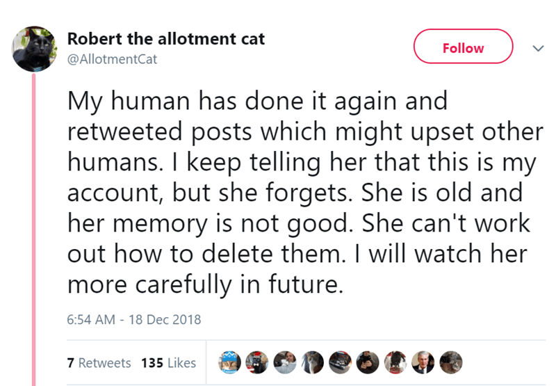 twitter - Text - Robert the allotment cat Follow @AllotmentCat My human has done it again and retweeted posts which might upset other humans. I keep telling her that this is my account, but she forgets. She is old and her memory is not good. She can't work out how to delete them. I will watch her more carefully in future. 6:54 AM - 18 Dec 2018 7 Retweets 135 Likes