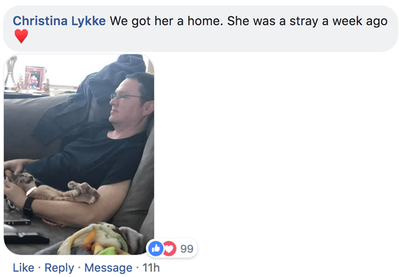 Product - Christina Lykke We got her a home. She was a stray a week ago 99 Like Reply Message 11h