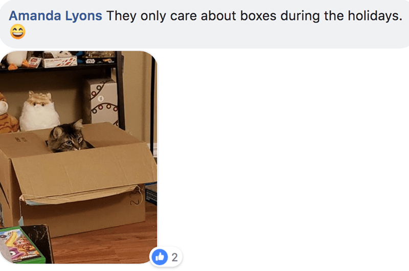 Product - Amanda Lyons They only care about boxes during the holidays. 2