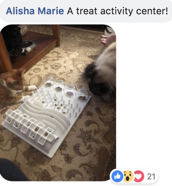 Puppy - Alisha Marie A treat activity center! 21