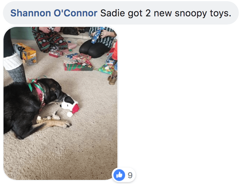 Text - Shannon O'Connor Sadie got 2 new snoopy toys.