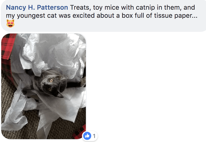 Product - Nancy H. Patterson Treats, toy mice with catnip in them, and my youngest cat was excited about a box full of tissue paper... 1
