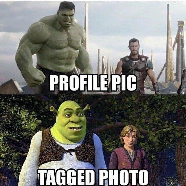 meme about looking like the Hulk in your profile pic and like Shrek in tagged photos