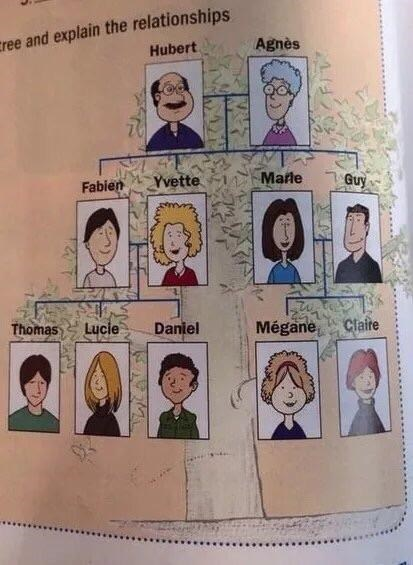 crappy design of family tree where all family members are related