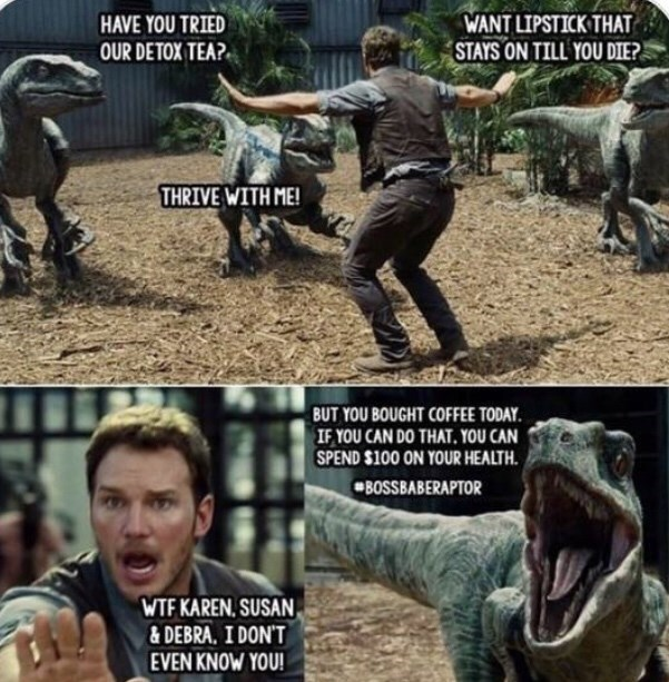 Jurassic Park meme about the velociraptors being typical white women