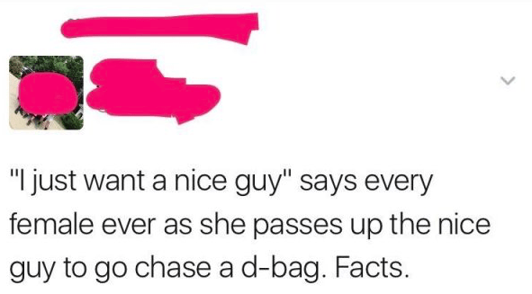 """Text - """"I just want a nice guy"""" says every female ever as she passes up the nice guy to go chase a d-bag. Facts >"""