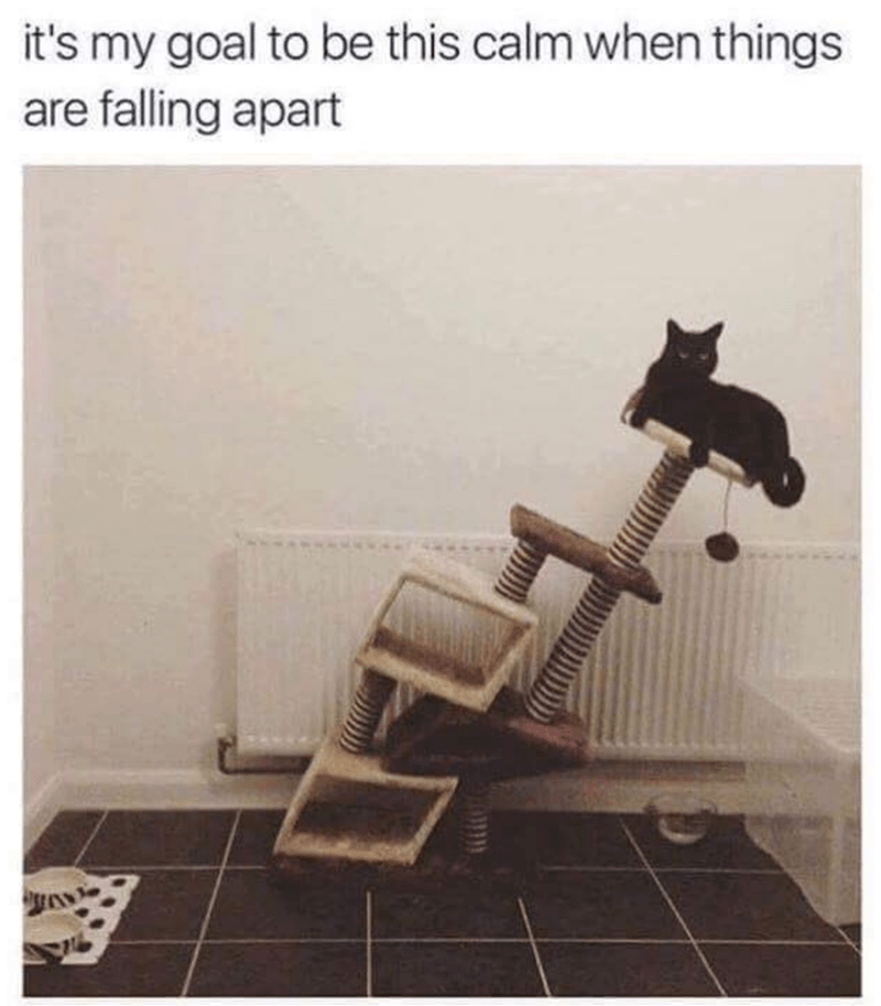 meme about wanting to stay calm with pic of cat sitting on crumbling cat tree