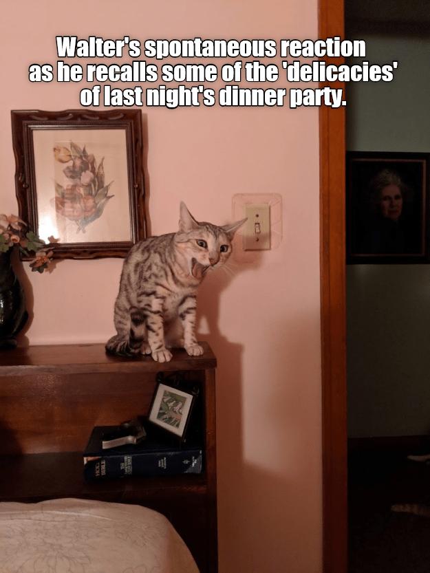 Dinner made a big impression