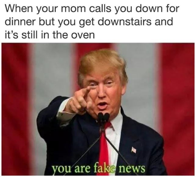 "meme about being called to dinner before it's ready with pic of Trump calling something ""fake news"""
