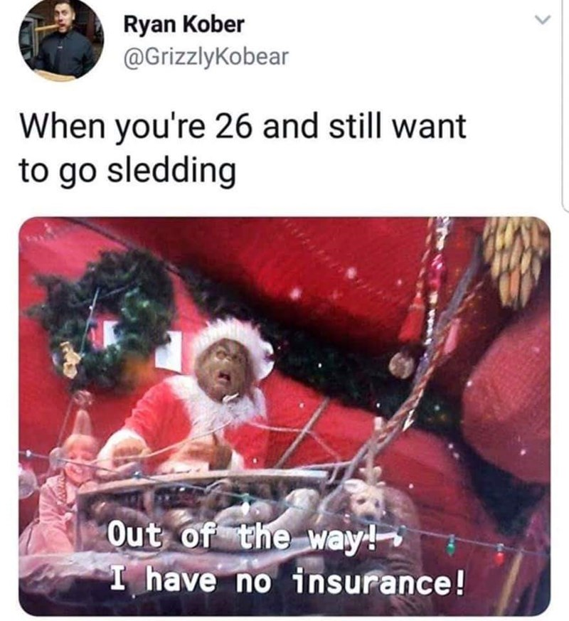 meme about winter activities as an adult with pic of the Grinch sledding