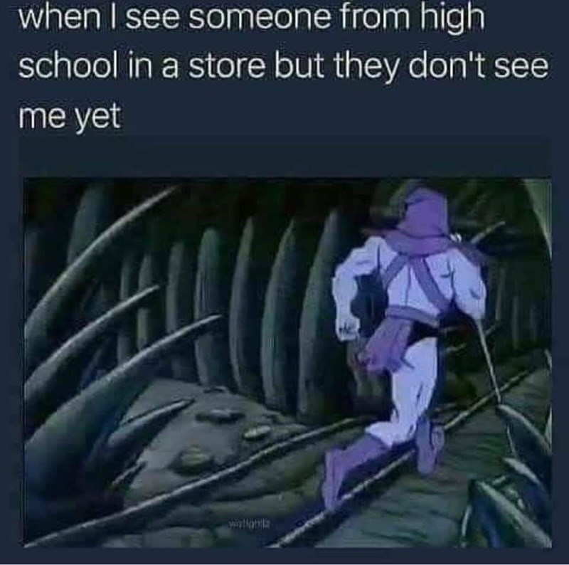meme about not wanting to talk to people from high school with pic of Skeletor running away
